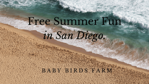 Free Summer Fun in San Diego.
