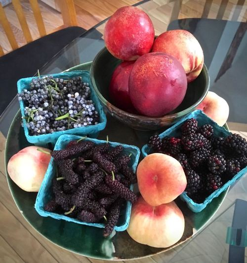 summer berries and stone fruit from Specialty Produce