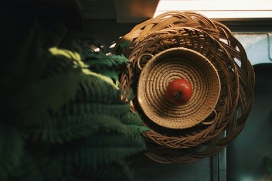 your indoor garden awaits