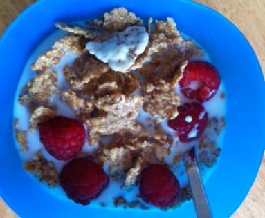 jenny craig, yogurt coated flakes