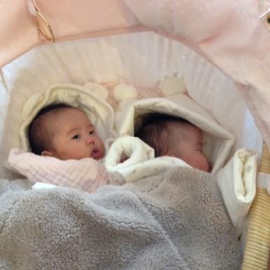 新生児用ベビーカー、双子用ベビーカー。