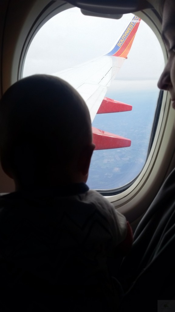 Baby on Airplane in Zipadeezip