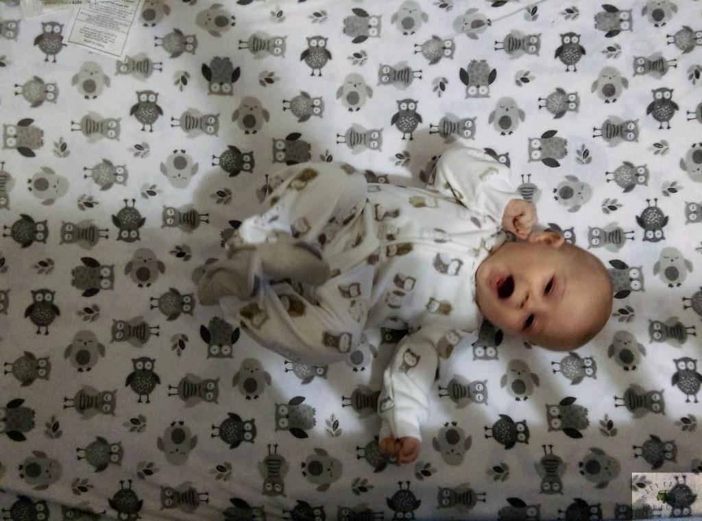 Baby-Schedule-babycastanonboard.com