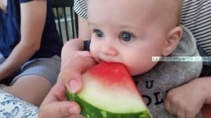 Teething watermelon
