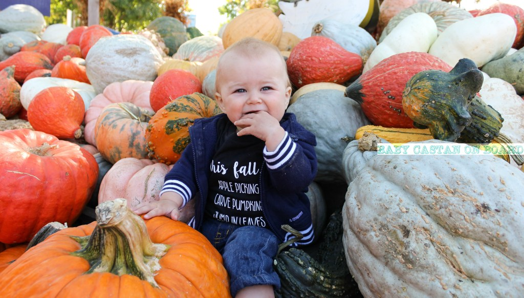 Things To Do With Baby: Great Country Farms