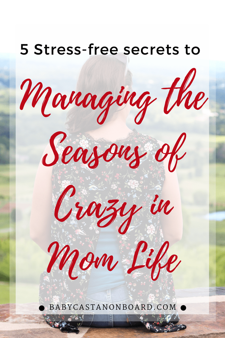 As a mom and full-time employee with a side hustle, life is busy. Sometimes it's just plain crazy. Here are 5 tips for handling the seasons of crazy in life.