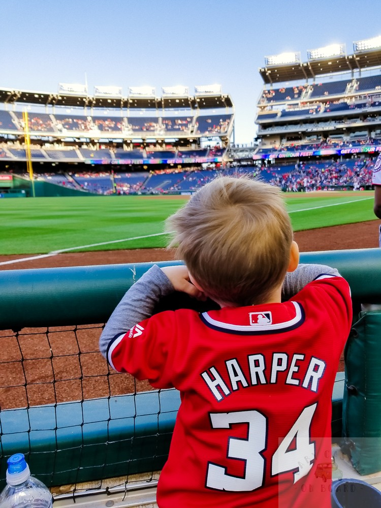 washington nationals baseball team_toddler watching game