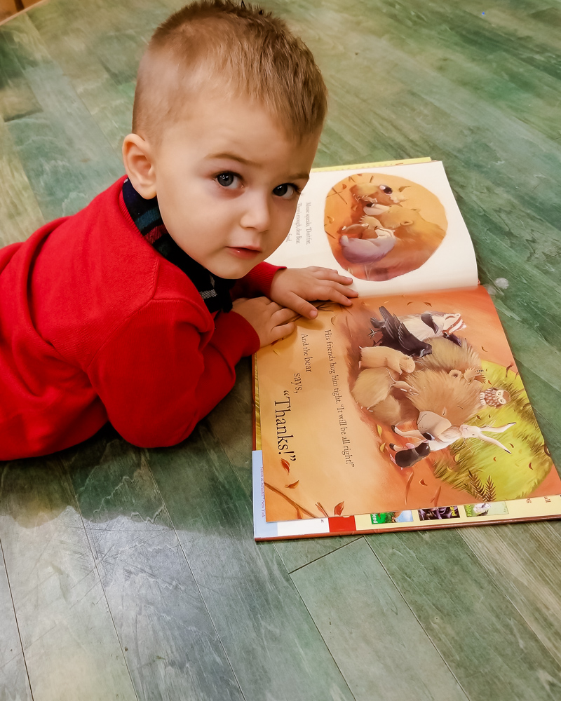 Top 5 Thanksgiving Books for Toddlers featured by top DC mommy blogger, Baby Castan on Board: toddler reading