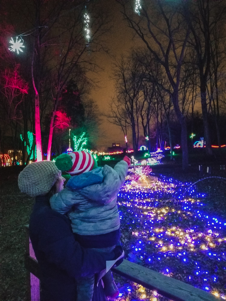 Christmas Lights in Washington DC You Don't Want to Miss featured by top DC blog, Baby Castan on Board: picture of Meadowlark Christmas lights