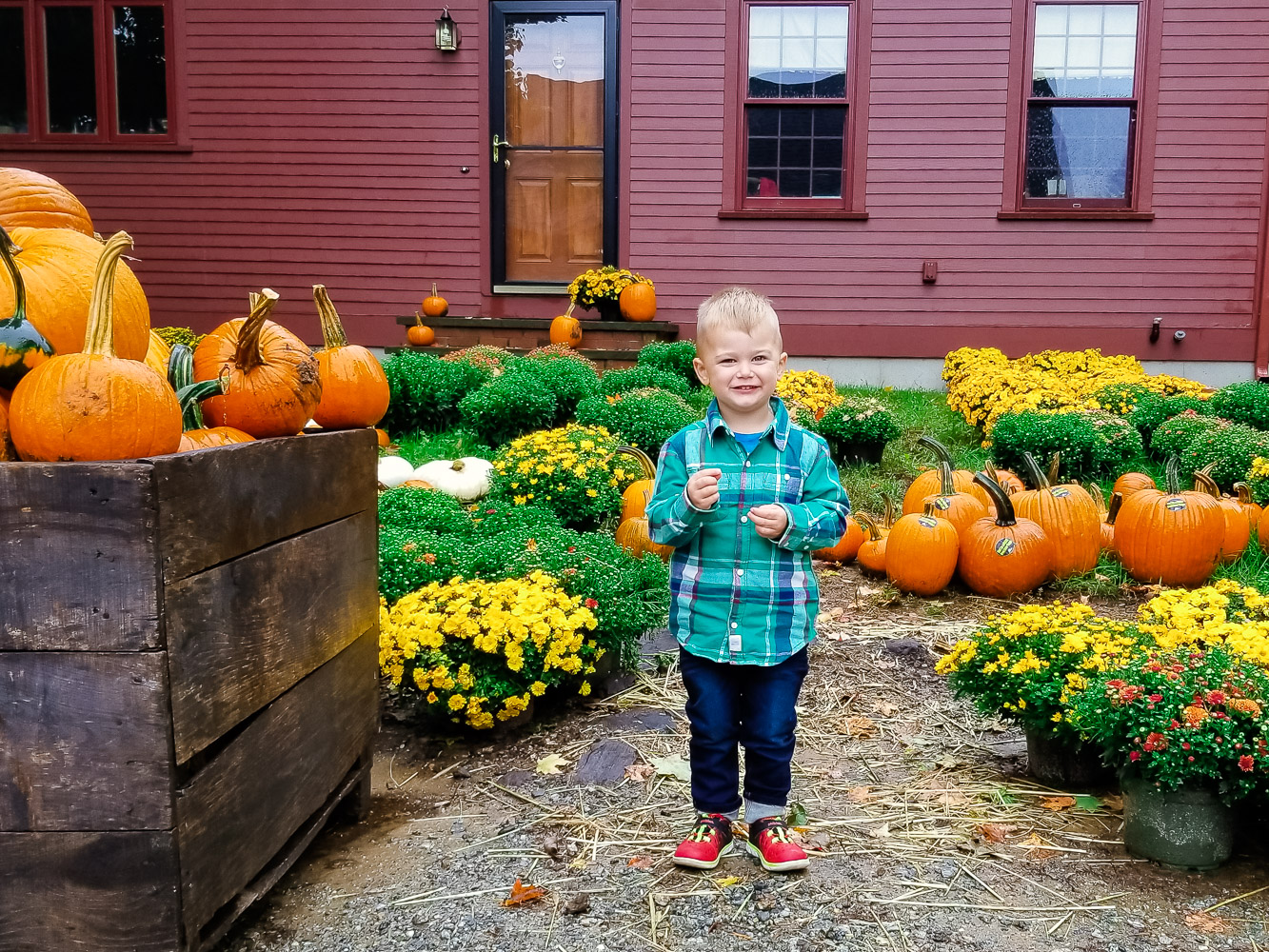 The Best toddler boy jeans featured by top DC mommy blog, Baby Castan on Board: image of a toddler boy wearing toddler boy jeans, plaid shirt and red shoes