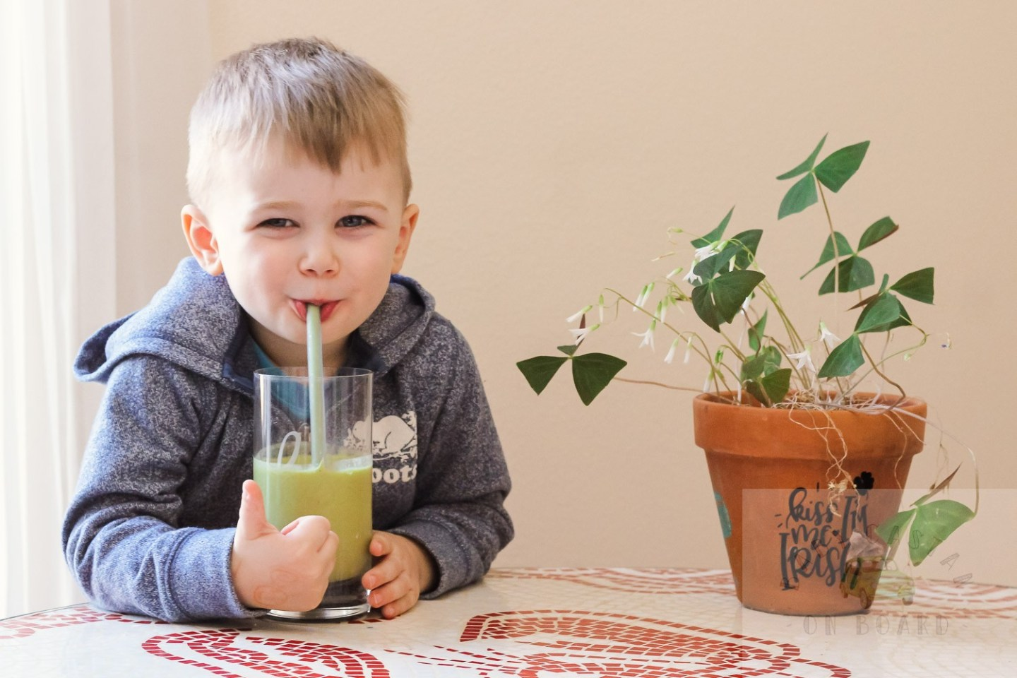 A St Patricks Day Smoothie Your Toddler Will Love