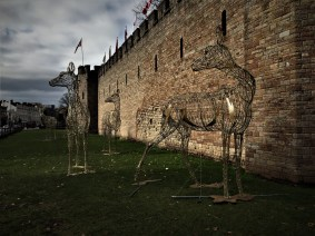 Reindeer outside Cardiff Castle