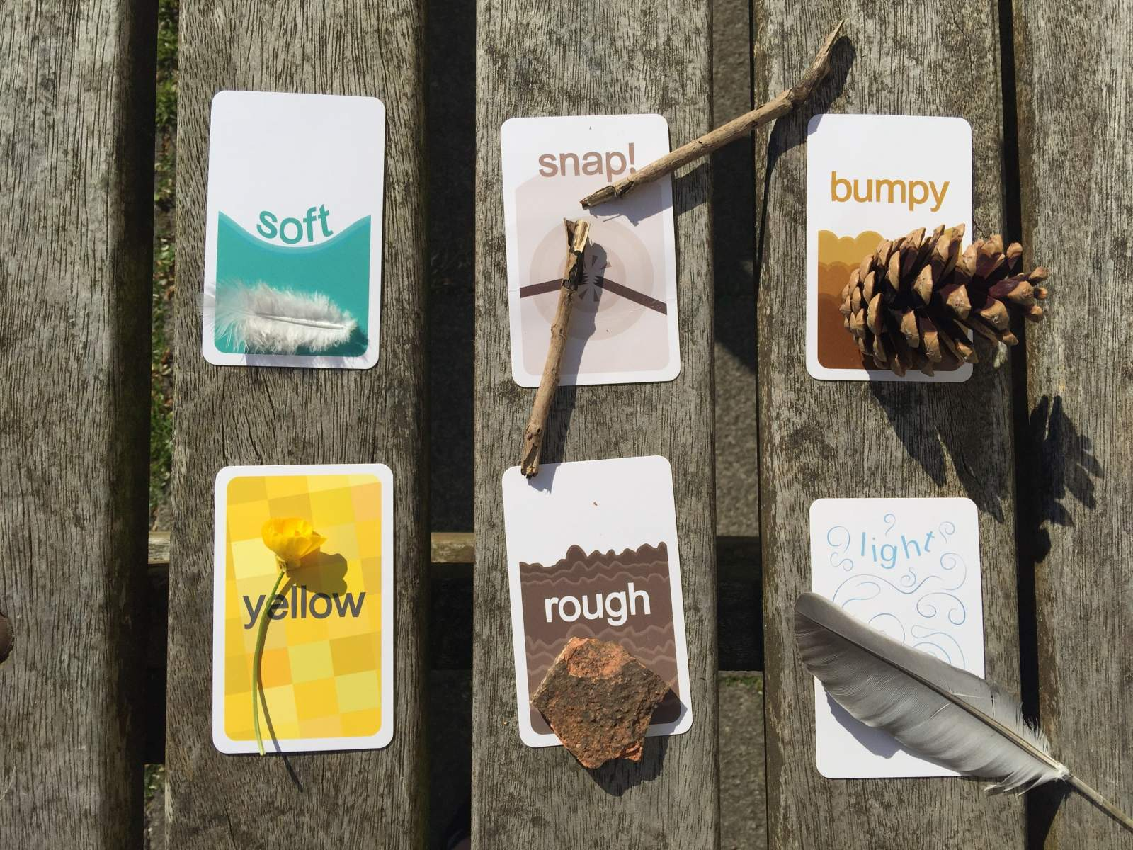 Go find it! sensory trust outdoor nature walk card game
