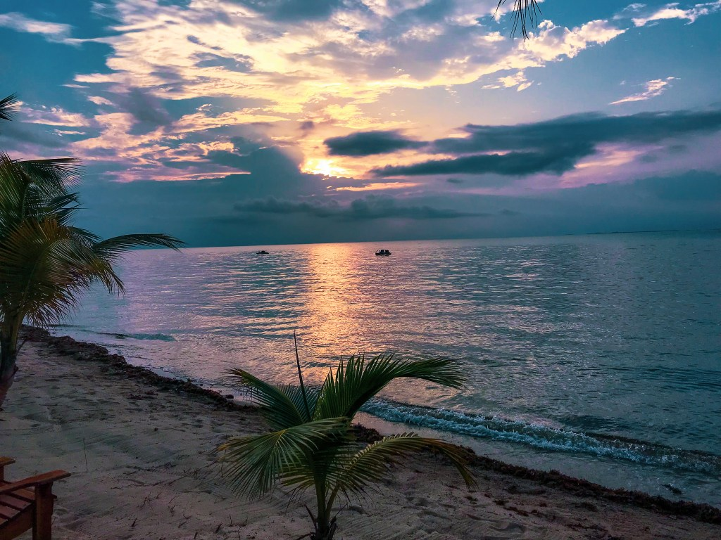 sunset over ocean with palm trees on beach