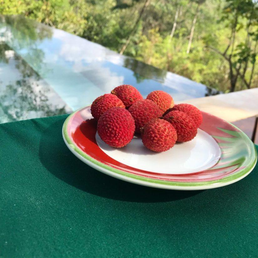 fresh lychee fruit on plate in Belize