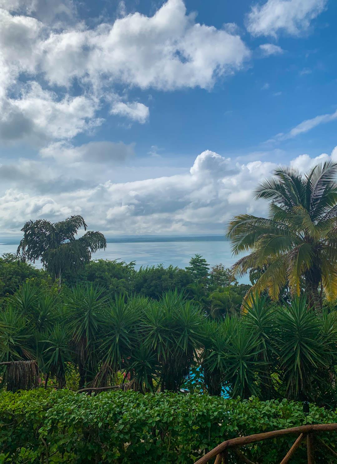 La Lancha review view overlooking pool