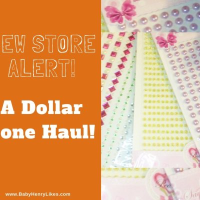 New Store Alert! A Dollar Zone Haul Up on My YouTube Channel!