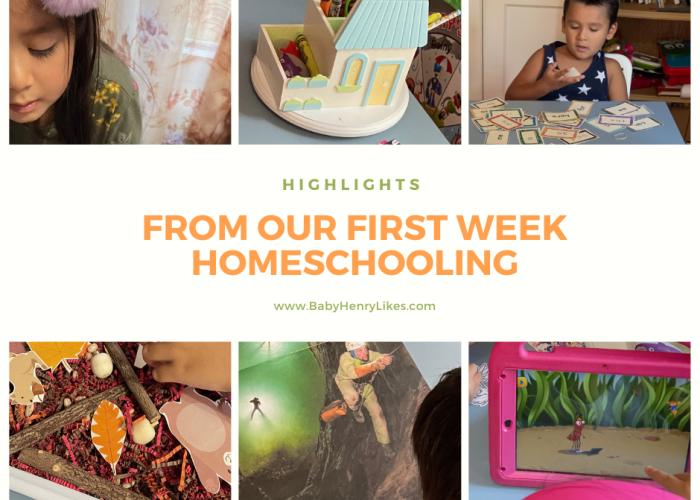 Highlights from our first week homeschooling