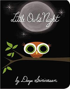 little owl's night book review, Little Owls Night book cover
