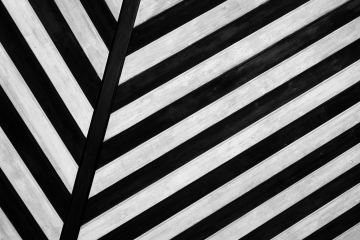 featured image of black and white stripes