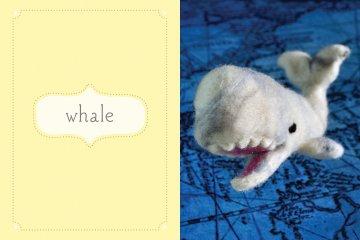 Cozy Classics: Moby Dick spread