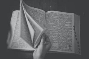 dictionary e1618928609614