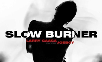 Larry Gaaga Slow Burner ft Joeboy mp3 download