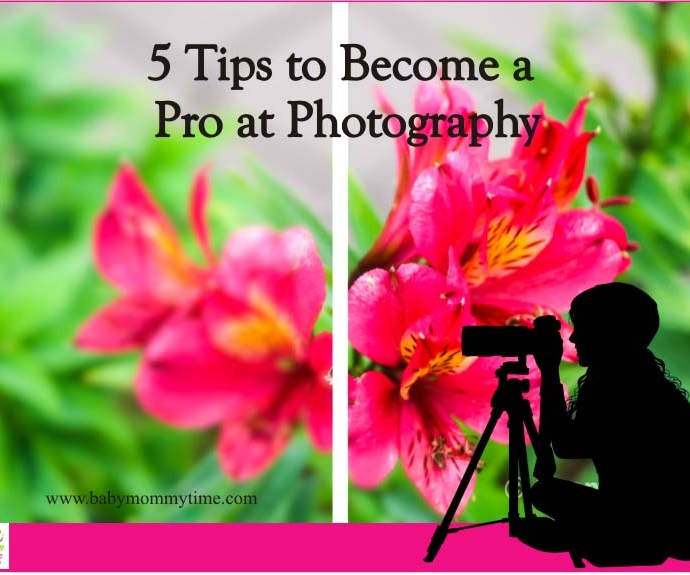 5 Tips to Become a Pro at Photography