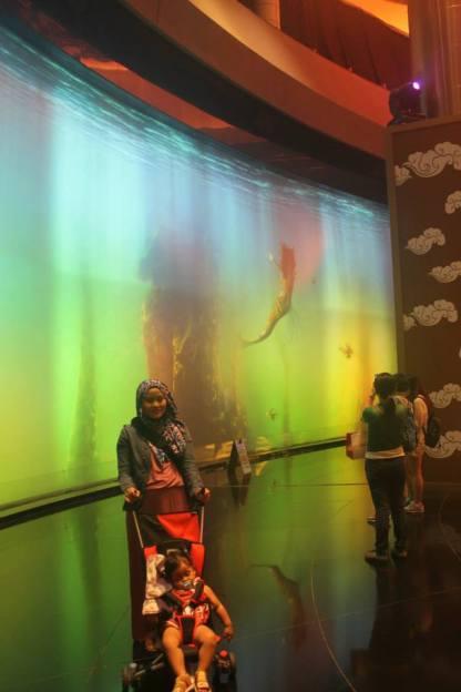 Aquarium Ikan Duyung