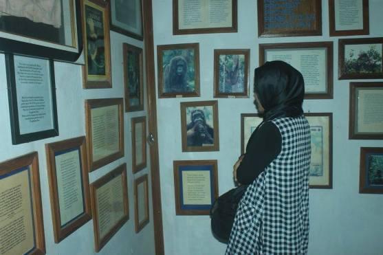 Di dalam museum