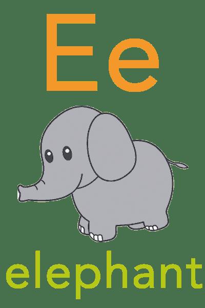 Baby ABC Flashcard E For Elephant Baby Mozart