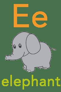 Baby Mozart ABC Flashcard - E for elephant