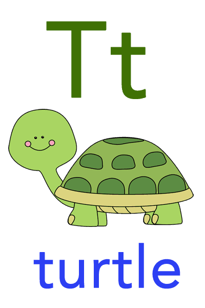 Baby ABC Flashcard - T for turtle