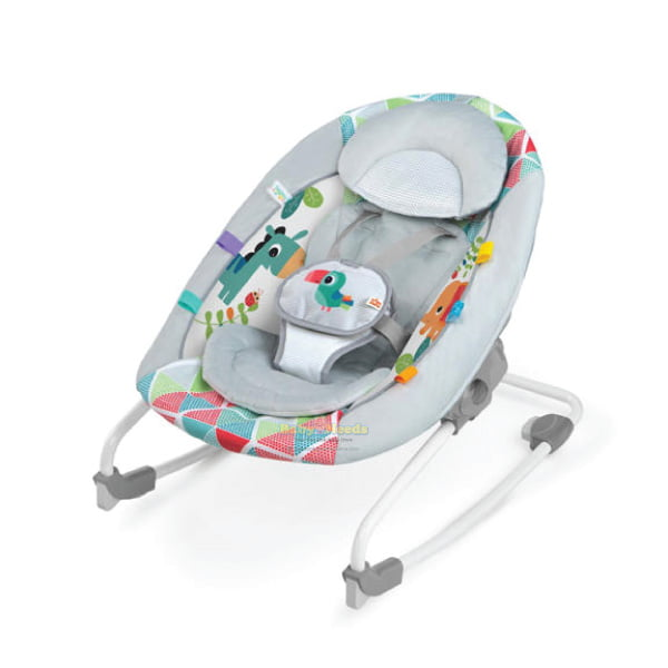 Bright Starts : 2-in-1 Toucan Tango Rock and Swing | Baby