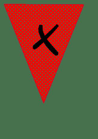 fanion X