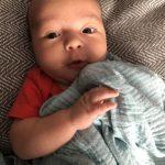 Baby Days – 8 Week Update