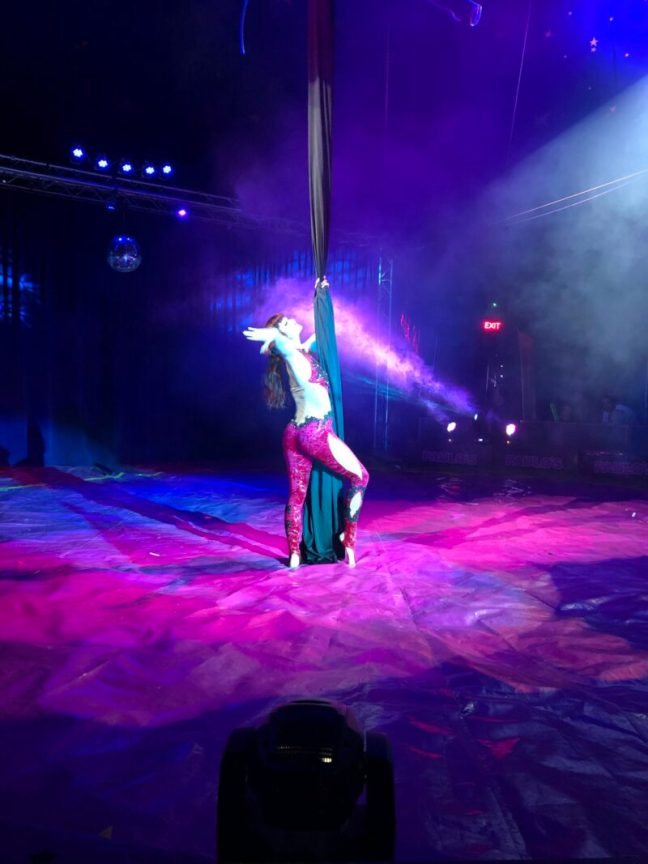 An Aerial gymnast performing in the Paulos Circus