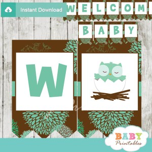 printable tiffany blue brown owl personalized baby shower banner