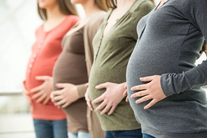 The many pregnant bodies