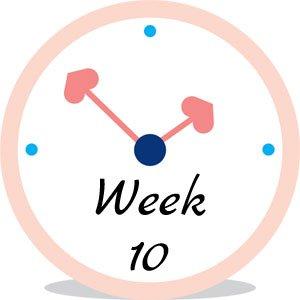 Zwangerschap week 10