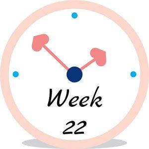 Zwangerschap week 22