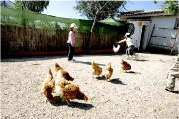 granja escuela Brunete