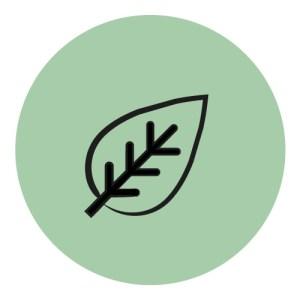 Baby Wood sinonimo di sostenibilità