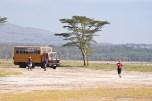 8. Safari in Kenya and Tanzania, Africa. Credit: Flickr/David Wilmot