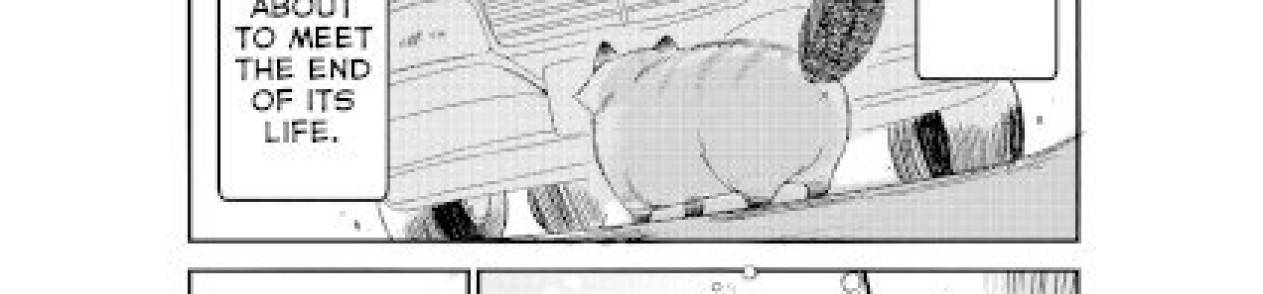 Manga A Story about a Cat Reincarnated in a Different World Where There are no Cats