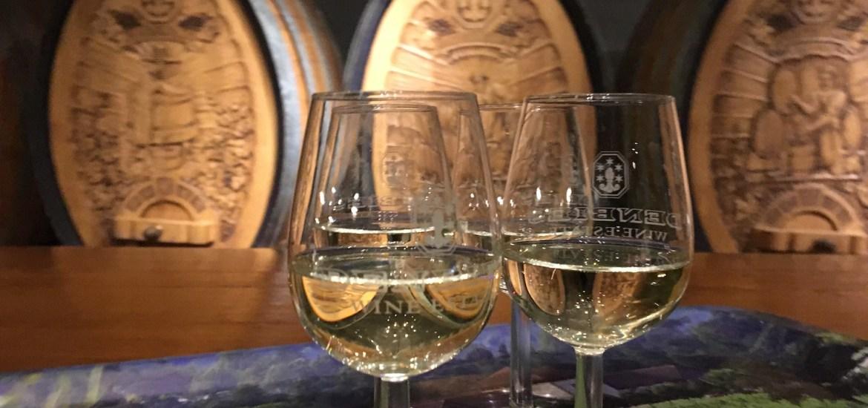 Wine Tasting Denbies Surrey