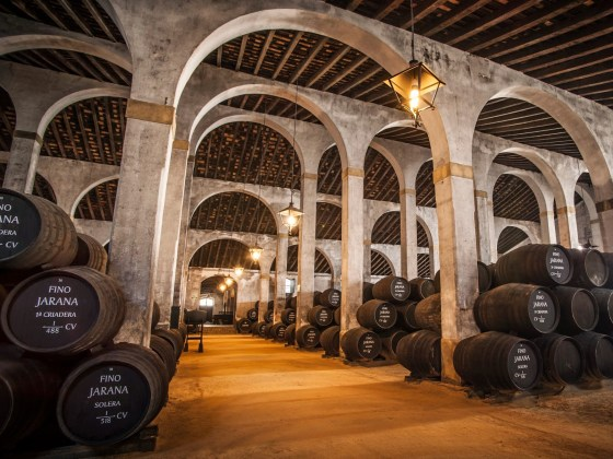 Bacchus Travel Andalusia Sherry Triangle Bodega Hidalgo