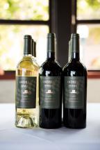 Andretti-Wines