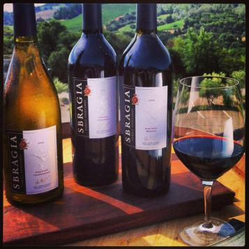 wines-and-glass-over-vineyard