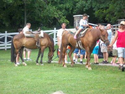 farm party horses